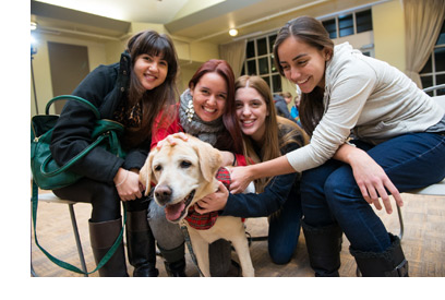 Dog therapy at UNB