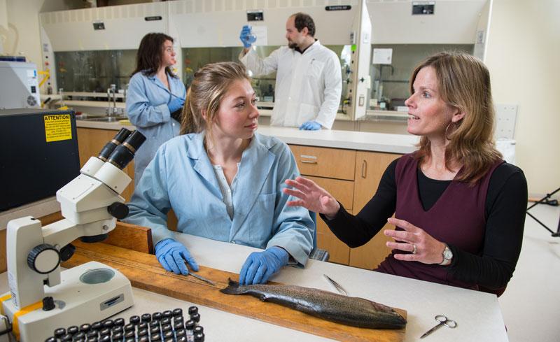 Karen Kidd Lab - Canadian Rivers Institute